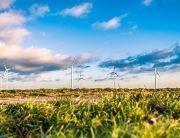 Mudanzas sostenibles con el medioambiente